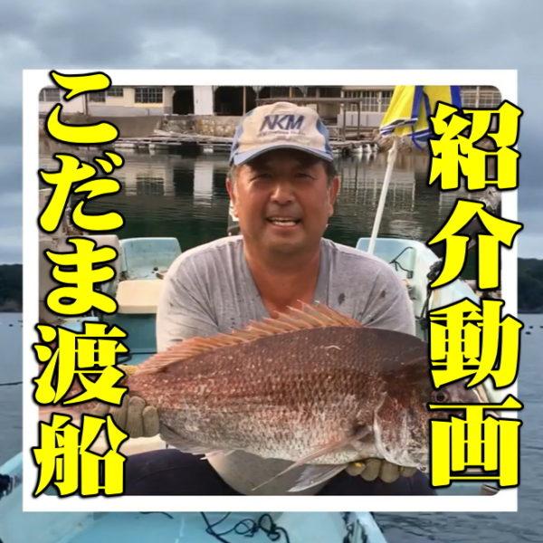 こだま渡船紹介動画