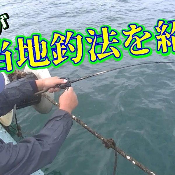 こだま渡船で良く釣れる釣り方を紹介します