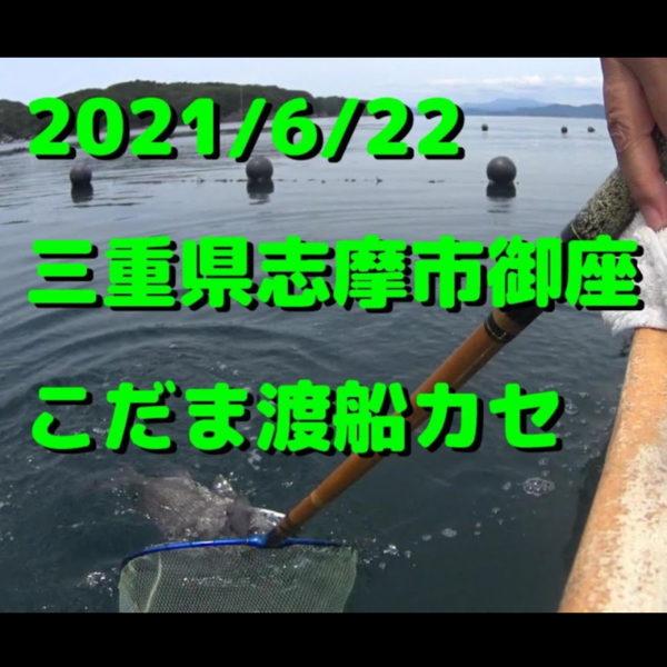 2021/6/22英虞湾御座 こだま渡船カセ(チヌかかり釣り)