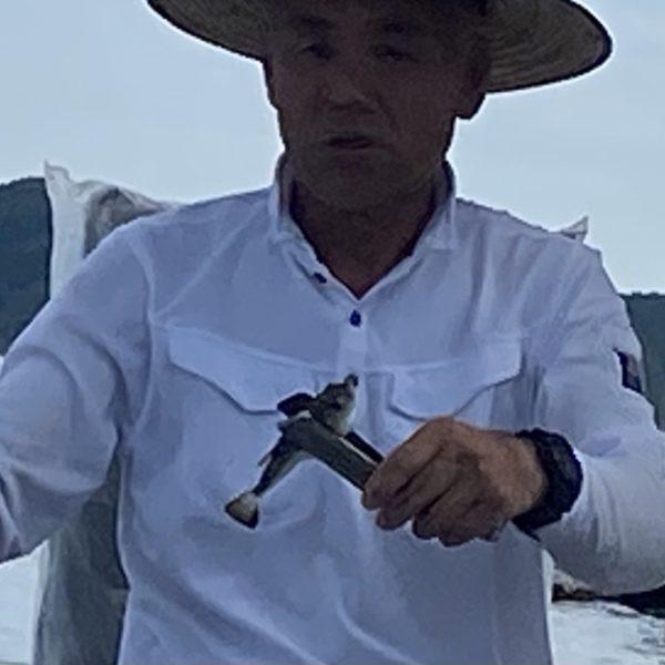 こだま渡船 カセ釣り釣果 2021/7/28