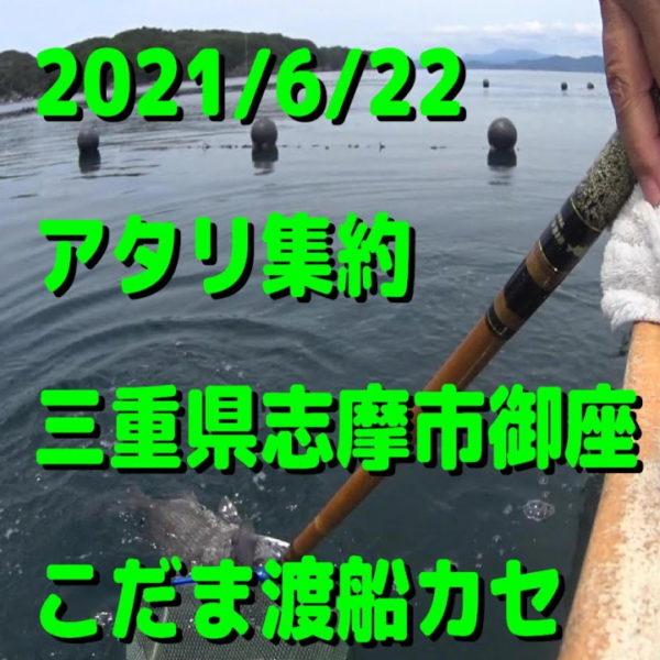 チヌかかり釣り様の当船での動画です。